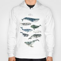 gray Hoodies featuring Whales by Amy Hamilton