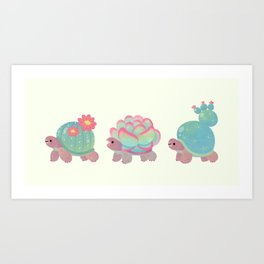 Cactus tortoise Kunstdrucke