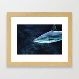 Gray Shark Head (Color) Framed Art Print