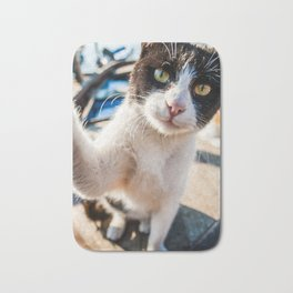Cat on old boat relaxing near the sea at Bosphorus Bath Mat