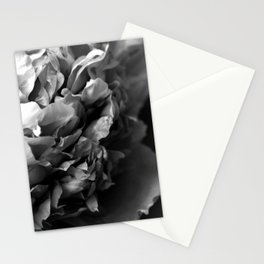 Black and White Summer Peony Stationery Cards
