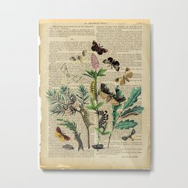 Book Art Caterpillar, Moths & Butterflies Metal Print