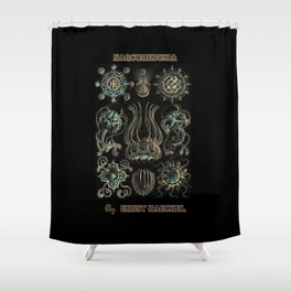 """""""Narcomedusia"""" from """"Art Forms of Nature"""" by Ernst Haeckel Shower Curtain"""