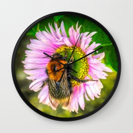 Bumblebee on a Daisy Wall Clock