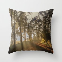 The firts light Throw Pillow