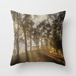 The firts light Throw Pillow