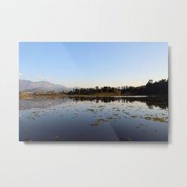Lake Moss Metal Print