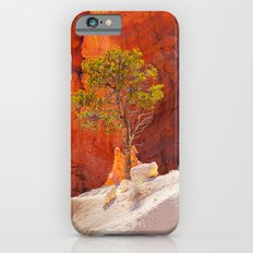 Bryce Canyon. iPhone 6s Slim Case