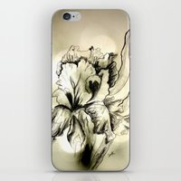 iris iPhone & iPod Skins featuring Iris by Suzanne Kurilla