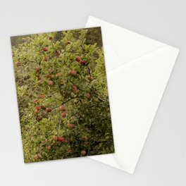 Apple Tree WV Stationery Cards
