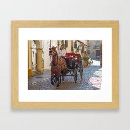 Carriage driver in Cordoba Framed Art Print