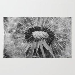 Dandelion Black and White Photography | Nature Art | Plant | Botanical | Wish Rug
