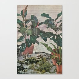 Plantlife - Safari Canvas Print