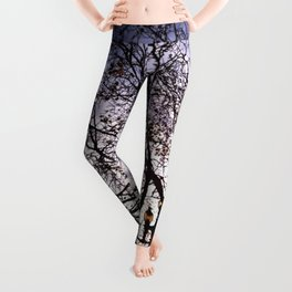 Up Away Leggings