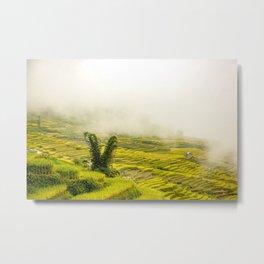 Viet Nam  Art Print, Y Ty Rice Terrace, Paddy field, Wall Art Decor, Travel Poster Metal Print