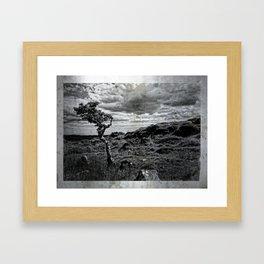 Wild Beauty in Connemara, Co. Galway Framed Art Print