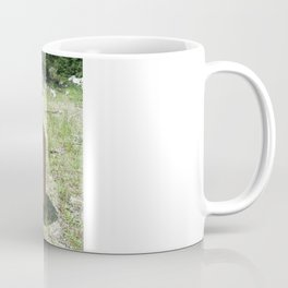 Link to A Bygone Era Coffee Mug