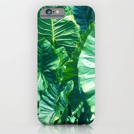 Papua New Guinea Giant Vibrant Green Taro Leaves iPhone Case