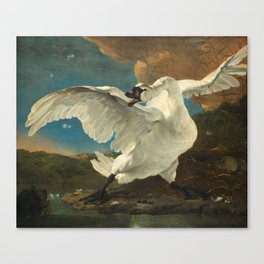 The Threatened Swan by Jan Asselijn Canvas Print