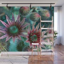 Succulents Flower Garden Wall Mural