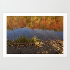 Colours in Mauricie - Canada Art Print