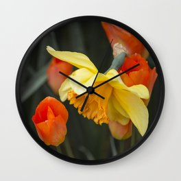 Narcissus Tulip  Wall Clock