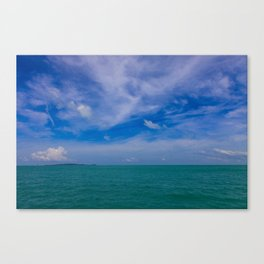 Natures Gems Canvas Print