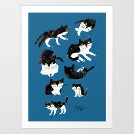 cat study Art Print