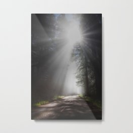 It's All About The Light Metal Print