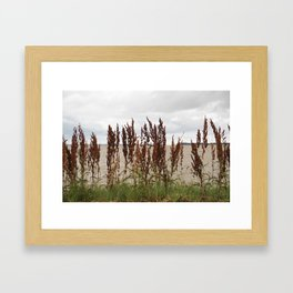 James River Framed Art Print