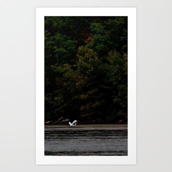 Take Flight 2 Art Print