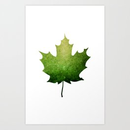 Maple Leaf in Green - Oh Canada Art Print