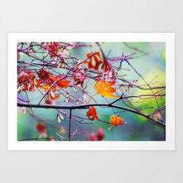 Poetic Autumn Time Special in the Middle of November Art Print