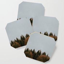 Wild Mountain Thyme Coaster