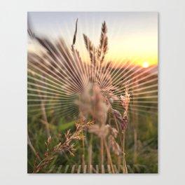 Peel sunset lll - sunset graphic Canvas Print