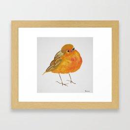 Tangerine Bird Framed Art Print