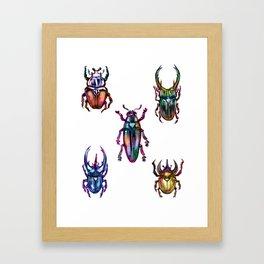 Rainbow Beetles Framed Art Print