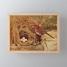 Neltje Blanchan - Bird Neighbours (1903) - Song Sparrow Framed Mini Art Print