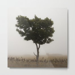 Standing Tall In The Fog Metal Print