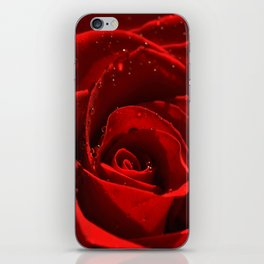 Red Rose with water drops 93 iPhone Skin