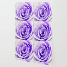 Beautiful Pastel Rose Floral Wallpaper