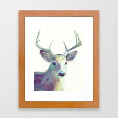 Whitetail No. 2 Framed Art Print