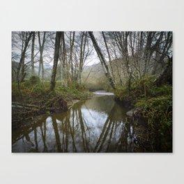rain on redwood creek Canvas Print