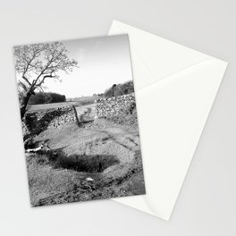 The Leaning Oak Stationery Cards