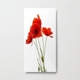 Delicate Red Poppies Vector Metal Print