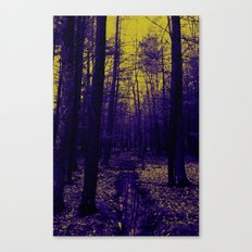 Woods stream Canvas Print