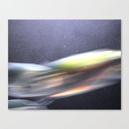 peixe Canvas Print