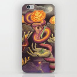 The Illusion of Security iPhone Skin