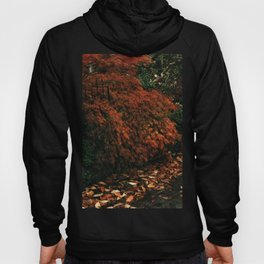 The House in the Wood - Bloom Hoody