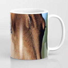 eye of horse. horse collection Coffee Mug
